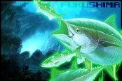 fukushima-tuna-coming-to-a-store-near-you