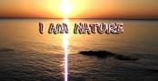Jim Lee on I Am Nature